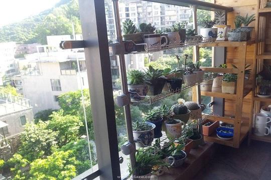 阳台装修放什么花架好看 阳台花架如何搭配设计