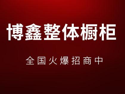 博鑫整体橱柜是几线品牌?博鑫加盟政策