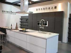 博西尼水槽洗碗机一体机怎么样?和厨柜搭配好看吗?